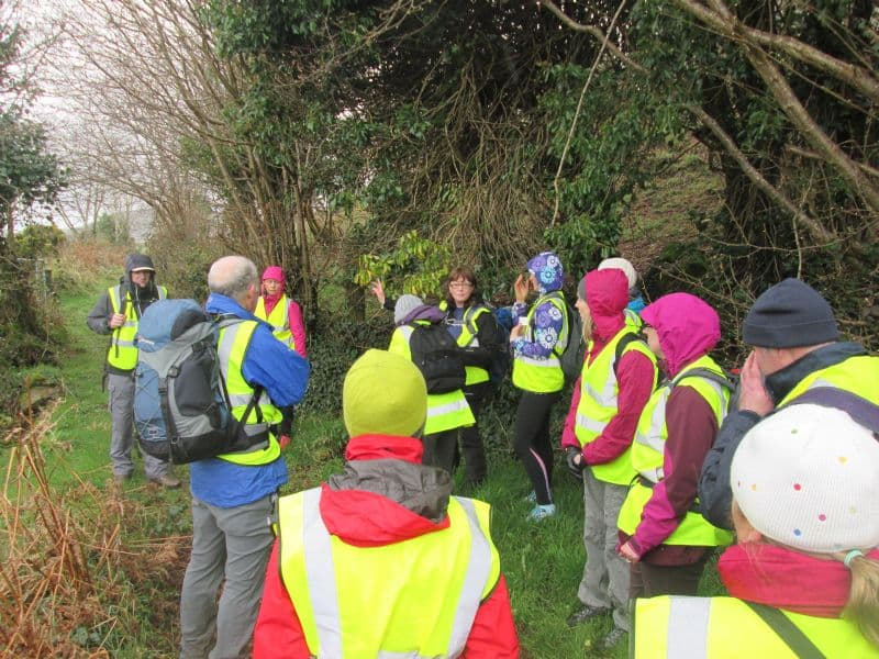 Walkers Put Their Best Foot Forward In The Ring Of Gullion