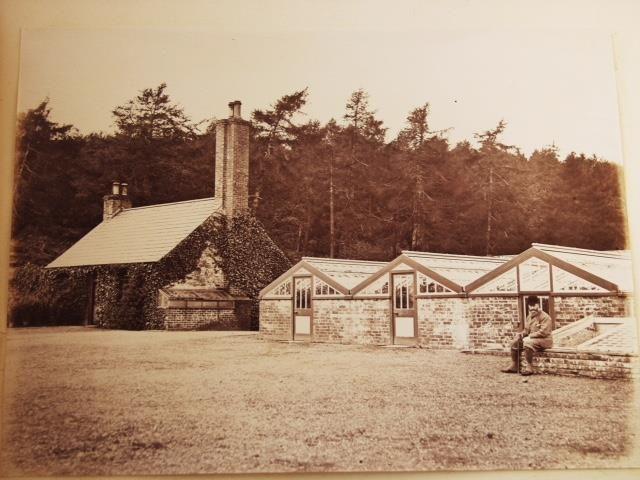 Public Meet to Discuss Restoration and Development of Castlewellan Forest Park