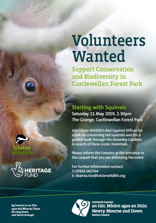 Volunteers Wanted to Help Support Biodiversity and Conservation at Castlewellan Forest Park