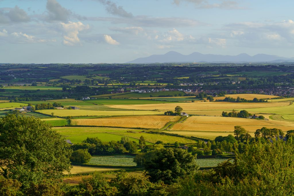 Annual Call for Ring of Gullion AONB Partnership New Members